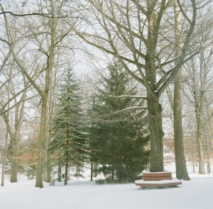 Photo o' Snow