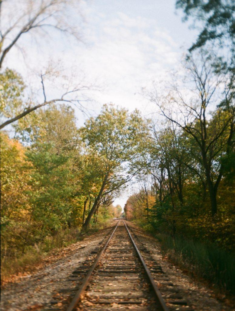 Dodd_Tracks